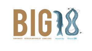 Logo BIG18 b